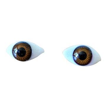 Authentic antique Bébé Bru jne doll paperweight eyes !!