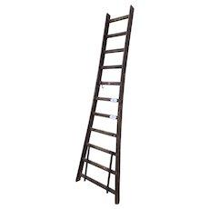 Antique Belgian Fruit Pickers Ladder