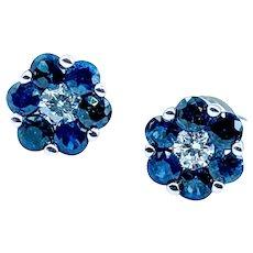 Unique Sapphire & Diamond Earrings