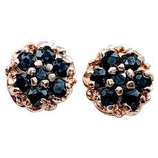 Unique .33ctw Sapphire Stud Earrings