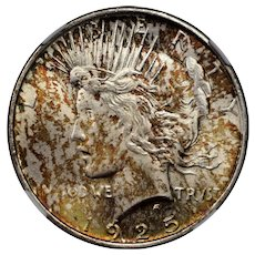 1925 U.S. Peace Dollar, NGC MS-64 Condition, Two-Sided Multicolored Toning
