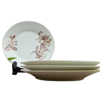 Gorgeous Set Of 4 Hand Painted Small Plates