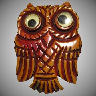 ultra rare carved Bakelite Googly eye googly eyed Owl Brooch pin