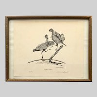 Fletcher Bryant Limited Edition Signed Print Fighting Gobblers Turkey Birds circa 1954