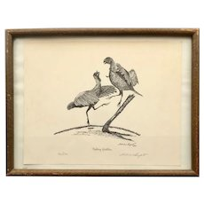 Fletcher Bryant Limited Edition Signed Print Fighting Gobblers Turkey Birds circa 1954