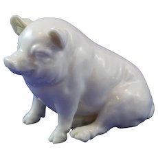 Belleek 3rd Period (1926/1946)  Black Mark Pig. Lovely Smile!!