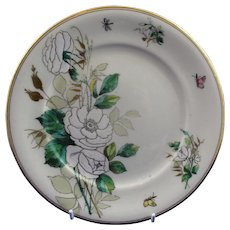 Rare Belleek Large Size First Period Convulvous Plate