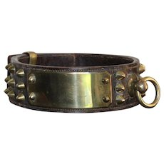 Antique Brass Spikes And Leather Dog Collar