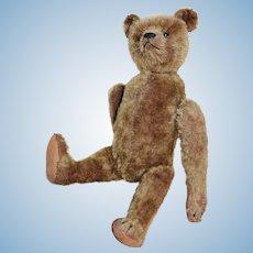 Rare Bing Somersaulting Bear, circa 1910