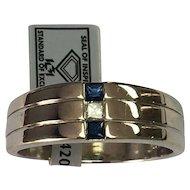 14 K White Gold Diamond & Sapphire Band