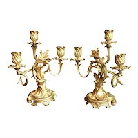 19th Century Pair of Candelabra, Ormolu, Louis XV Style, France