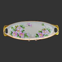 Walter Wilson RS Germany Hand Painted Floral Two Handled Tray
