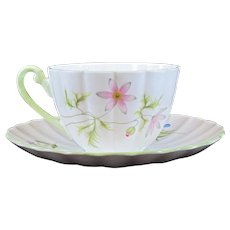 Shelley China Cup & Saucer Dainty Wild Anemone 13977