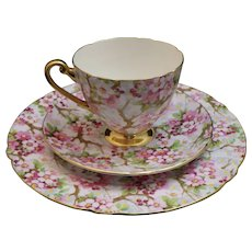 "Shelley Maytime Ripon ""Trio"" #13386 Cup, Saucer and 8"" Plate"