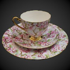 """Shelley Maytime Ripon """"Trio"""" #13386 Cup, Saucer and 8"""" Plate"""