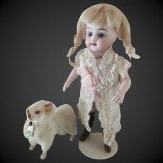 "little german Dog  rabbit fur 2 1/3"" circa 1950"
