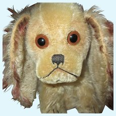 """1928-1934 STEIFF Charly dog with button 11 3/4"""" x 8 2/3"""""""