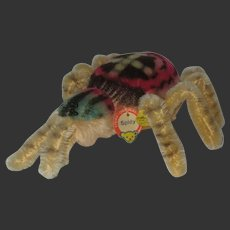STEIFF : Spidy the spider in large size 3ids 2322.00 original model 1960