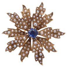 Victorian Edwardian 14K Yellow Gold Sapphire Seed Pearls Brooch Pin Pendant
