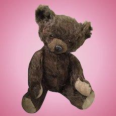 """""""Real"""" tin nose mohair plush teddy"""