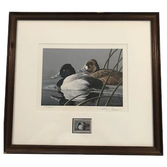 Framed Lesser Scaup Signed Print by Neal Anderson with Matching Duck Stamp ca1989-Rare