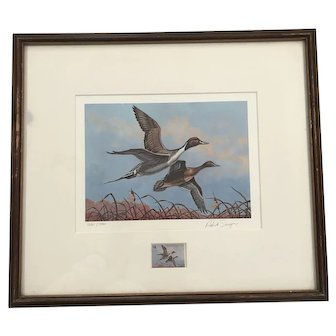 Framed Pintails Signed Print by Patrick Sawyer with Matching Duck Stamp ca1980-Rare
