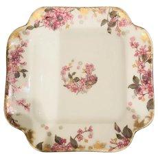 Haviland Limoges  Antique Plate