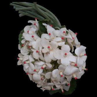 Vintage white violets