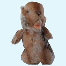 "Steiff Beaver Button In Ear 7"""