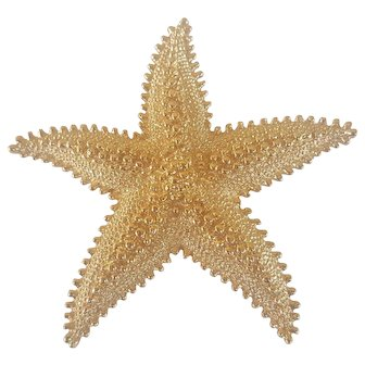 MONET Vintage Bold Starfish Brooch