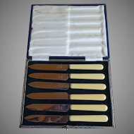 English Sheffield Stainless Fruit Knives in Original Box