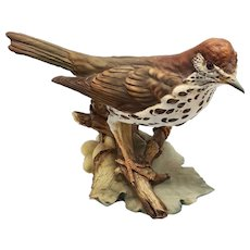 Realistic Wood Thrush Italian Porcelain Bird Signed Tay (Giuseppe Tagliariol)