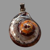 Handmade sterling silver 925 with caged natural African turbo Shell Pendant