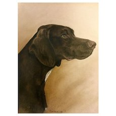 Vintage Painting of dog, charcoal by Pat Kresge 1977. Framed