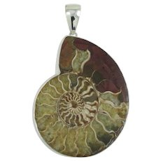 Charles Albert Sterling Silver and Ammonite Fossil Pendant