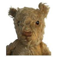 Vintage Teddy Bear mohair 1930-40s