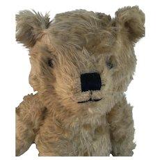 Joy- Toys Bear 1940-50s Australian