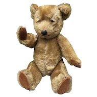 Vintage Musical Bear