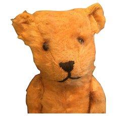 Vintage Australian Berlex bear