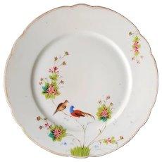 RARE 1890 Manifattura GINORI a Doccia Presso Firenze ~ antique, Asian inspired Cabinet Porcelain Plate of Birds