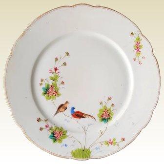 Manifattura GINORI a Doccia Presso Firenze ~ RARE 1890 antique, Asian inspired Cabinet Porcelain Plate of Birds