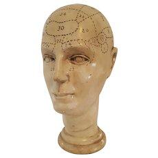 Vintage 1970's PHRENOLOGY head ~ Brain Cranial Mapping Display