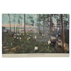 c. 1900 'Turpentine Farm, Florida' Postcard ~ Black Americana Memorabilia