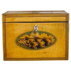 Shell Inlay Georgian Tea Caddy c.1790
