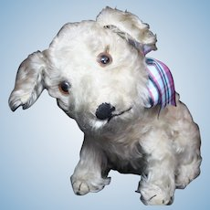 "12"" Steiff Molly Dog c1925-26"