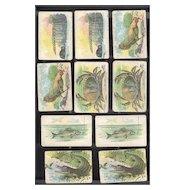 Assorted Antique Game Cards  Animals