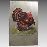 1907 Thanksgiving Greetings