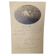 1907 Real Photo Postcard with Obituary for Nick the Dog