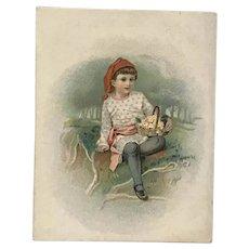 Victorian Trade Card Owl Brand Kenton Baking Powder