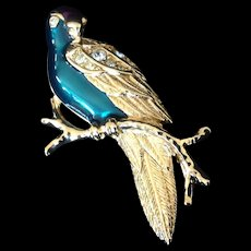 Avon Enamel and Rhinestone Tropical Bird or Parrot Pin. Book Piece